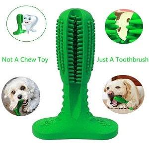 Y Dream Dog Toothbrush Stick