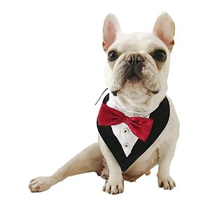 Barzt Formal Dog Tuxedo Bandana Collar