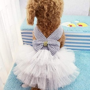 Celestte Pets Adorable Tutu Dog Dress