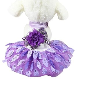 Sumen Small Dog Dress