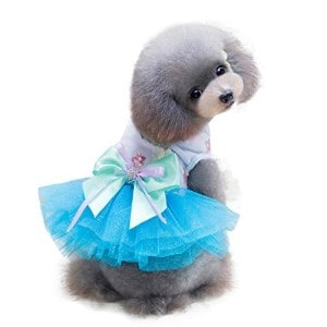 Boomboom Adorable Dog Dress