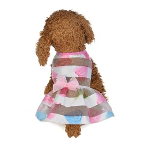 Wakeu Small Dog Transparent Colorful Vest Shirt