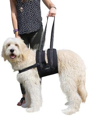 Labra Dog Sling