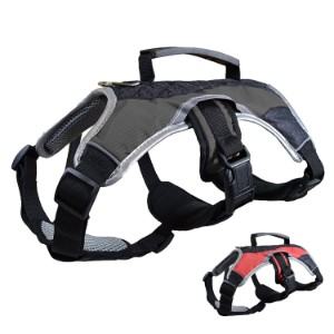 Peak Pooch Dog Carry Harness