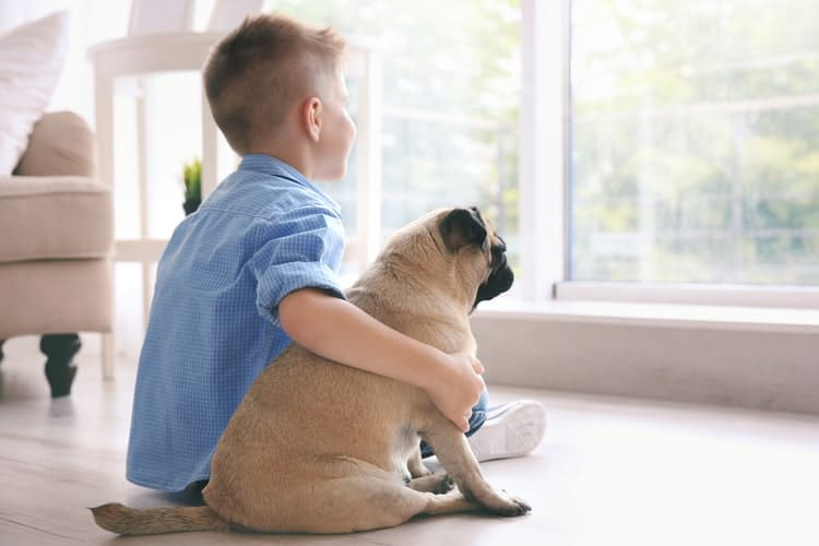 The Best Pets for Kids