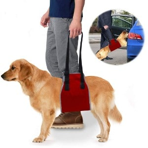 roadwi Dog Support Harness