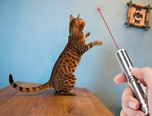 Undercut Innovations Professional Laser Pointer
