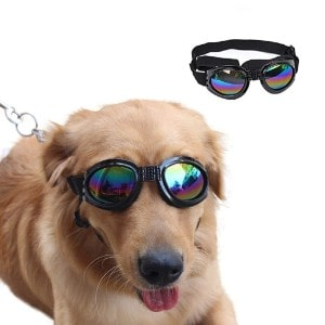 VANVENE Dog Sunglasses