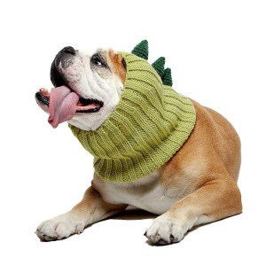Zoo Snoods Dinosaur Dog Costume
