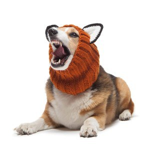 Zoo Snoods Fox Dog Costume