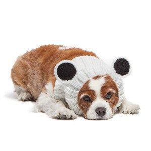 Zoo Snoods Panda Bear Dog Costume