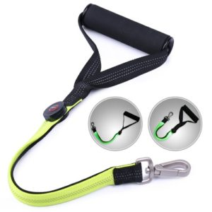AISITIN Heavy Duty LED Dog Leash