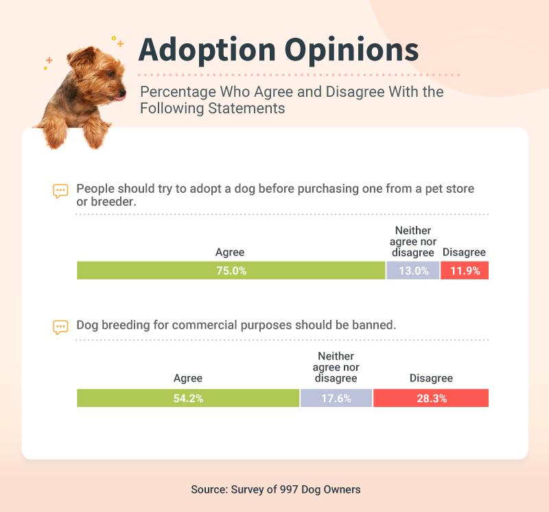 Adoption Opinions
