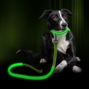 Clan_X led Dog Leash