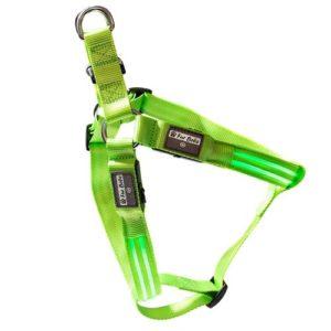 Fur Bebe Waterproof USB Rechargeable LED Harness