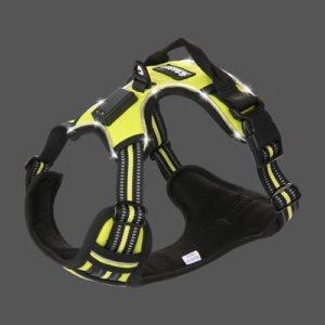 Gasky LED Dog Harness