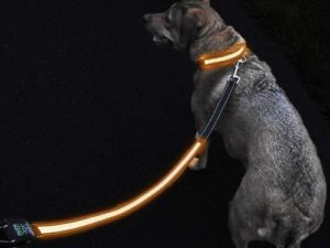 GlowHERO LED Light Up Dog Leash