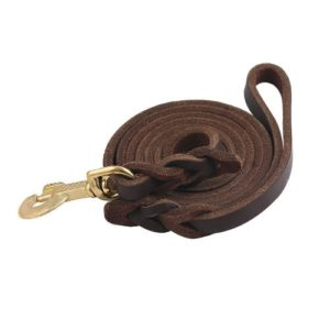 Guiding Star Brown 10ft Braided Leather Dog Training Leash with Copper Hook