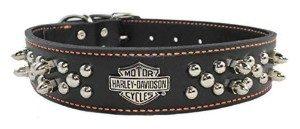 Harley-Davidson Spiked Leather Dog Collar