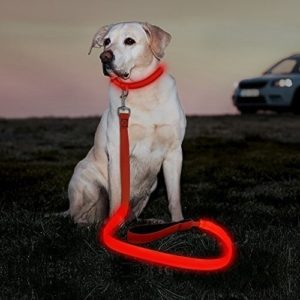 Illumenfun LED Dog Leash