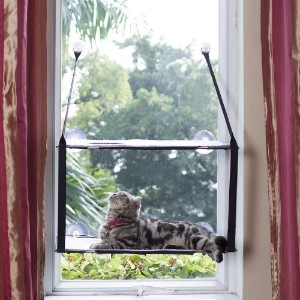 LIFIS Double Level Cat Window
