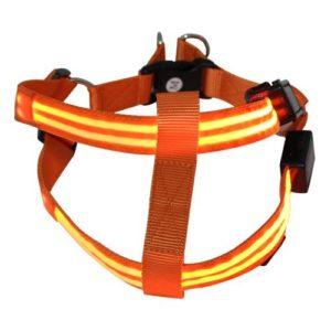 MORLIGHT Led Dog Halter Harness