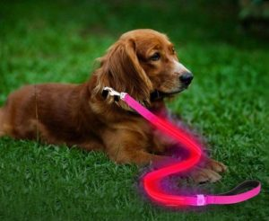 Moco Best Light Up Rechargeable 2 Strip LED Nylon Dog Leash