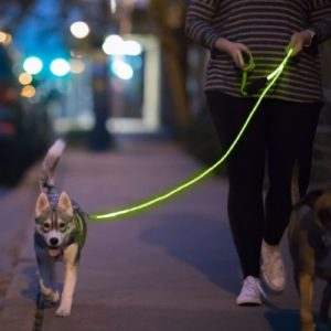 NiteyLeash - LED Glow in The Dark Pet Dog Leash