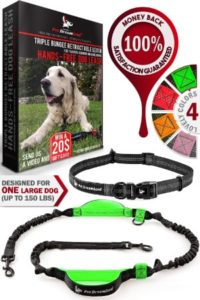 Pet Dreamland Hands Free Dog Leash