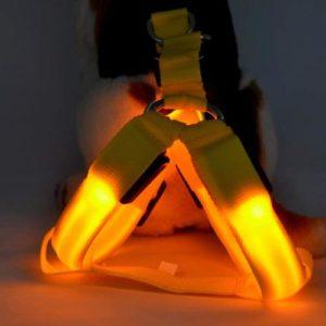 Saim LED Dog Harness
