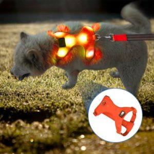 Vizpet Comfort Control Dog Harness