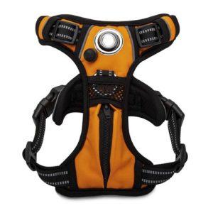 headlight harness Integrated 80 Lumen LED Dog Harness