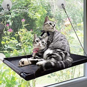 Raytops Cat Window Hammock