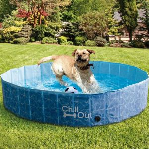 ALL FOR PAWS Outdoor Dog Pool