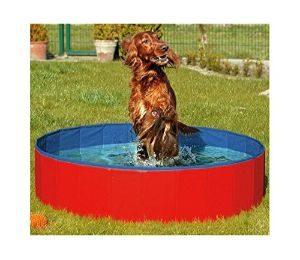 Furry Friends Foldable Dog Pool