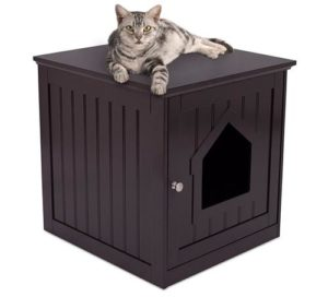 Internet's Best Litter Box Enclosure & Side Table
