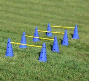MiMu Hurdle Cone Set