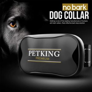 PetKing Anti-Bark Dog collar