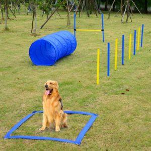 Festnight Outdoor Dog Agility Training Equipment Kit