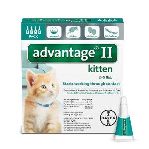 Bayer Advantage II Kitten Flea Treatment for Kittens, 2 - 5 lb