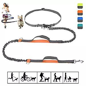 Bungee Dog Leash, Hands Free Dog Leash