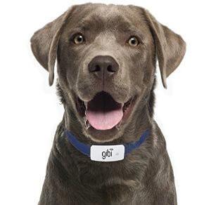 Gibi 2nd Gen Pet GPS Tracker
