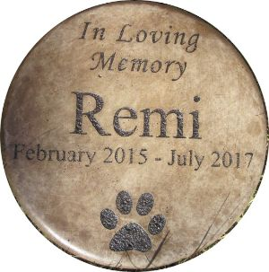Memories to Stone Personalized Pet Memorial Step Stone