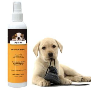 Petsvv Anti Chew Deterrent for Dogs