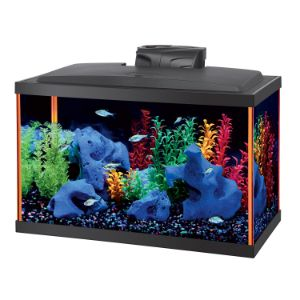 Aqueon Aquarium Starter Kits LED NeoGlow