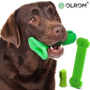Olrom Dog Toothbrush Stick