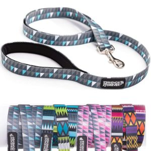 Friends Forever Durable Nylon Dog Leashes