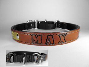 Haigler and Wallace Personalized Martingale Dog Collar