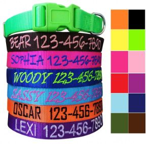 Mix Paws, Personalized Dog Collar