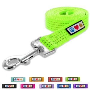 Pawtitas Pet Reflective Leash